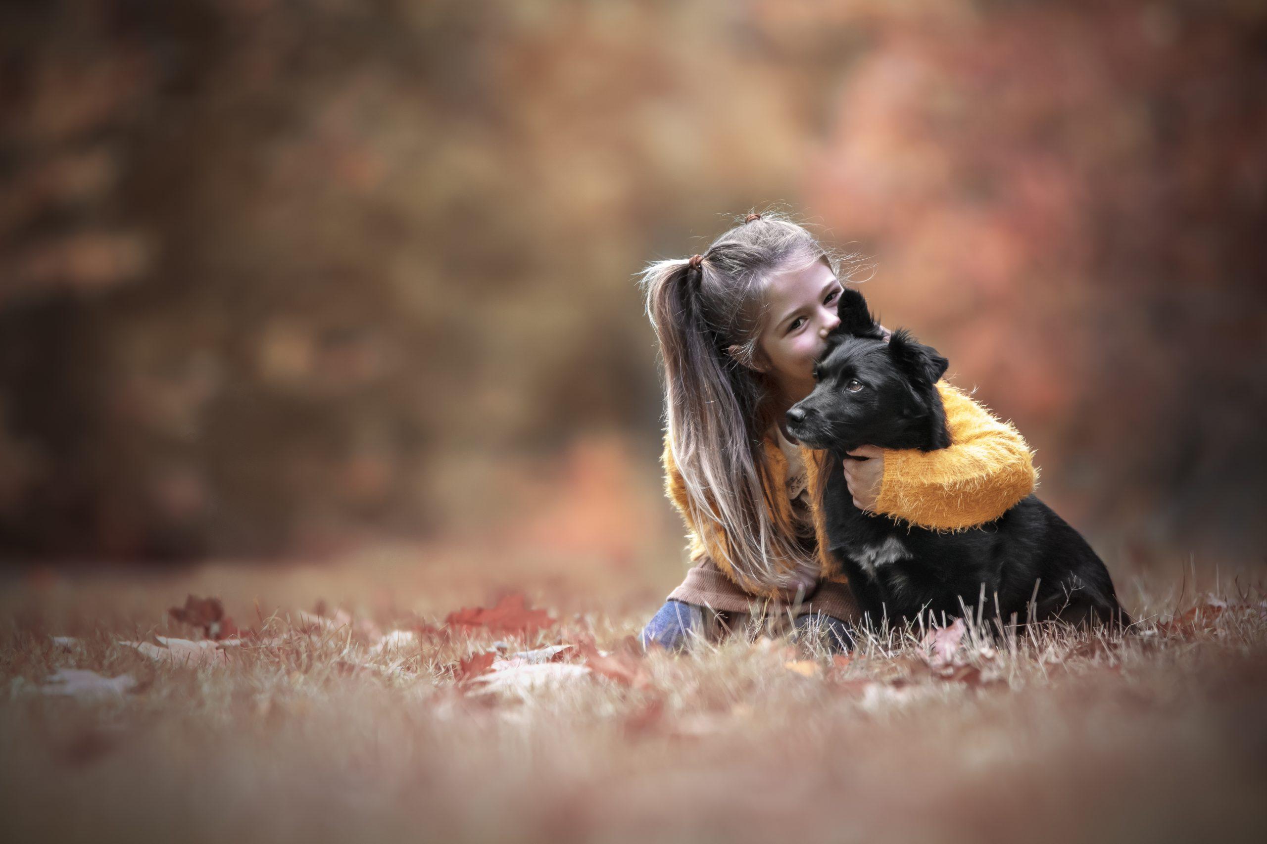 Kind hond fotoshoot